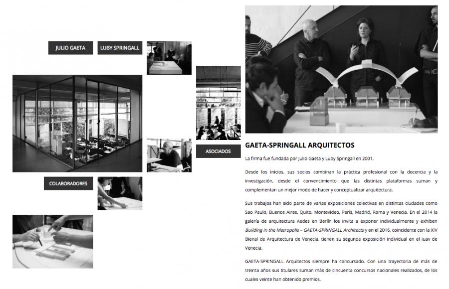 Gaeta Springall. Diseño y programación de sitio web.