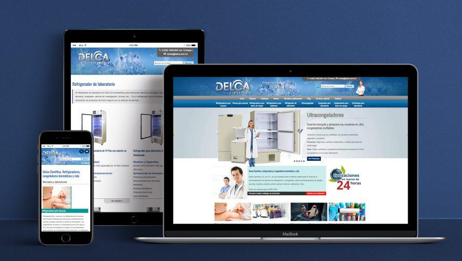 Delca Científica. Diseño y programación de sitio web.